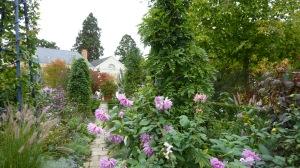 Arboretum d'Angers à l'automne - diversité et unité