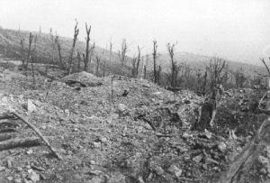 Mort-Homme en 1916