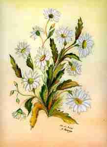 Marguerite, prénom de sa mère et symbole de la fête