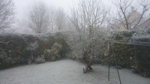 Fin décembre dans l'Essonne